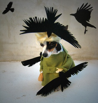 Sake as Tippi Hedren - Happy Halloween