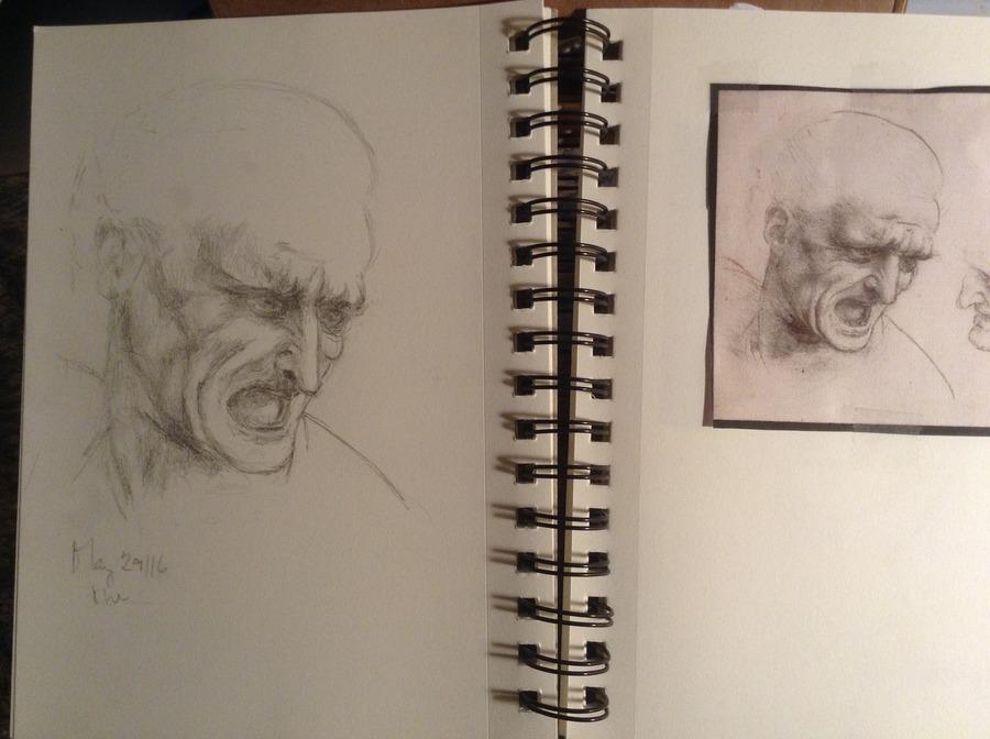 Copy of a  da Vinci sketch..