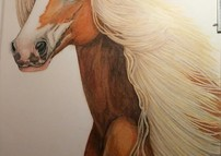 Gypsy the  Palomino Pony updated pic