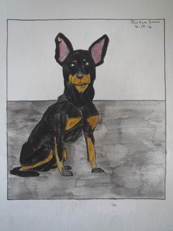 Miniature Pinscher Dog sitting