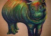 Pretty Pygmy Hippo