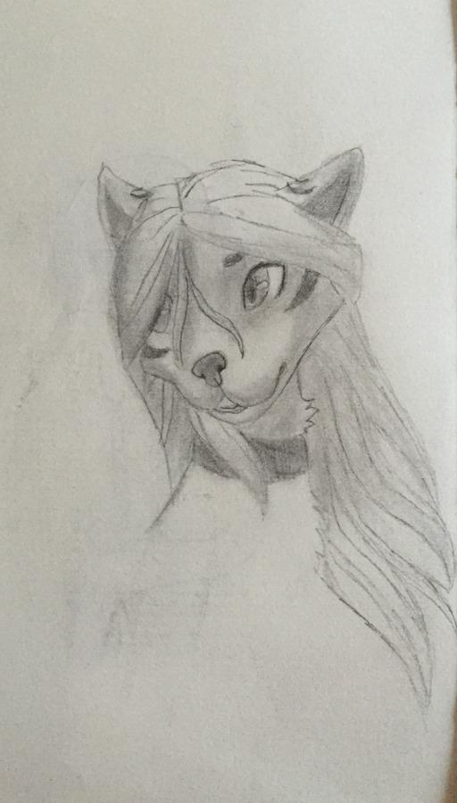Lyra the wolf