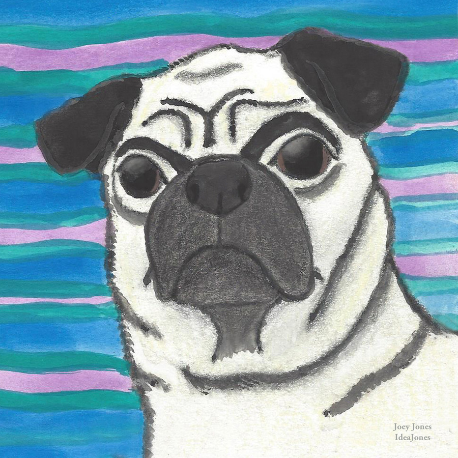 Pugly Is Beautiful, Joey Jones, IdeaJone