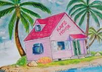 kame house roshis island