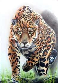 Spirit of the Forest (Jaguar)