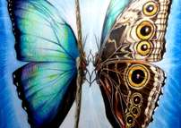 spirit dance (blue Morpho)
